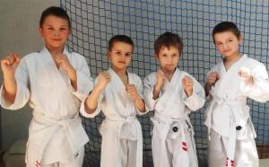 Ogólnopolska liga ju-jitsu