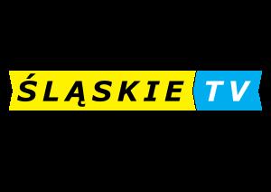 Mecz z Drzewiarzem w Śląskie.TV!