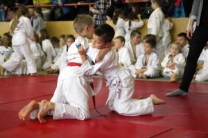 Siedem medali w turnieju judo