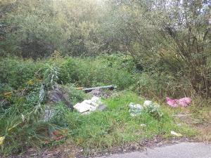 MPO uprzątnie dzikie wysypiska w Jaworznie